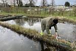 Přírodní koupací biotop v Litovli se chystá na letošní sezonu, 22. dubna 2021