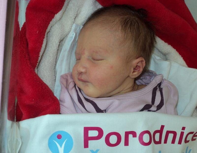 Sofie Staníková, Horka nad Moravou narozena 26. srpna míra 50 cm, váha 3310 g