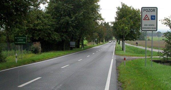Bezpečnost valeji mezi Olomoucí a Samotiškami zvýšilo hned několik prvků. Kromě nového značení či naváděcích bodů také bíle natřené kmeny stromů.
