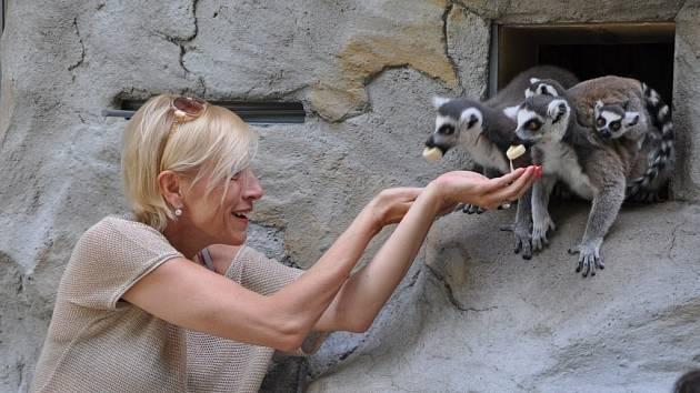Šansoniérka Renata Drössler v olomoucké zoo