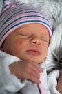 Kristýna Konečná, Dolany, narozena 16. března v Olomouci, míra 44 cm, váha 2330 g