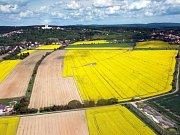 Žlutá Haná