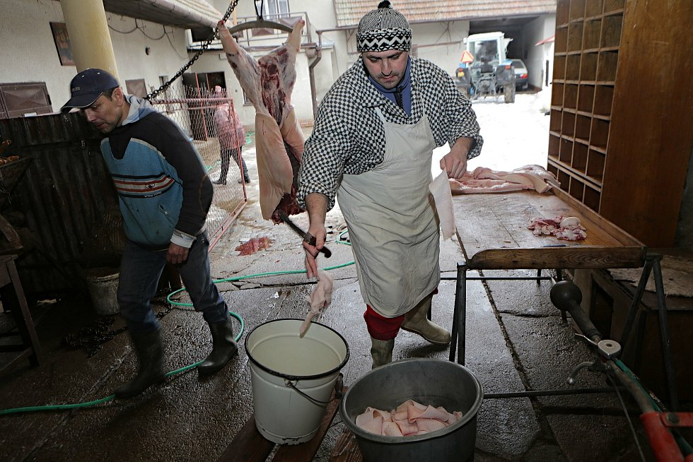 Rodinná domácí zabíjačka v místní části Ponikev obce Ludmírov na Konicku v režii řezníka Jana Buriana
