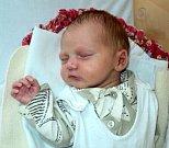 Tereza Absolonová, Olomouc, narozena 3. srpna ve Šternberku, míra 50 cm, váha 3310 g