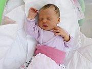Lea Molnarová, Olomouc narozena 10. března míra 51 cm, váha 3410 g