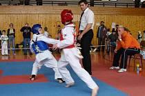 Bojovníci s olomouckého klubuTaekwondo Scorpions