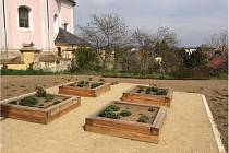 Nově založená farní zahrada ve Slatinicích na Olomoucku.