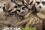 Zbrusu nový vizuál, kterým Zoologická zahrada Olomouc děkuje adoptivním rodičům zvířat