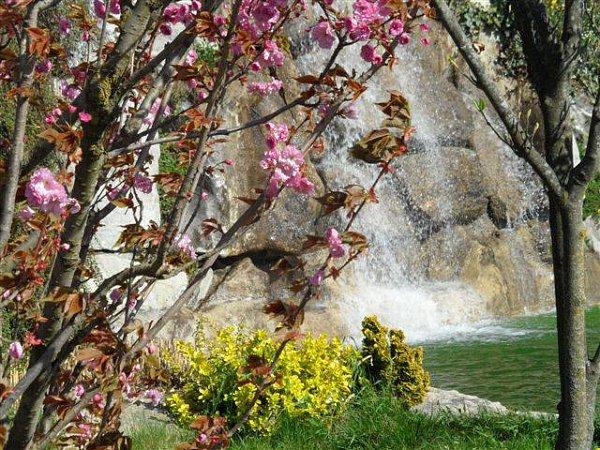 Slunce, voda, květy - tak vypadá jaro vHorizontu