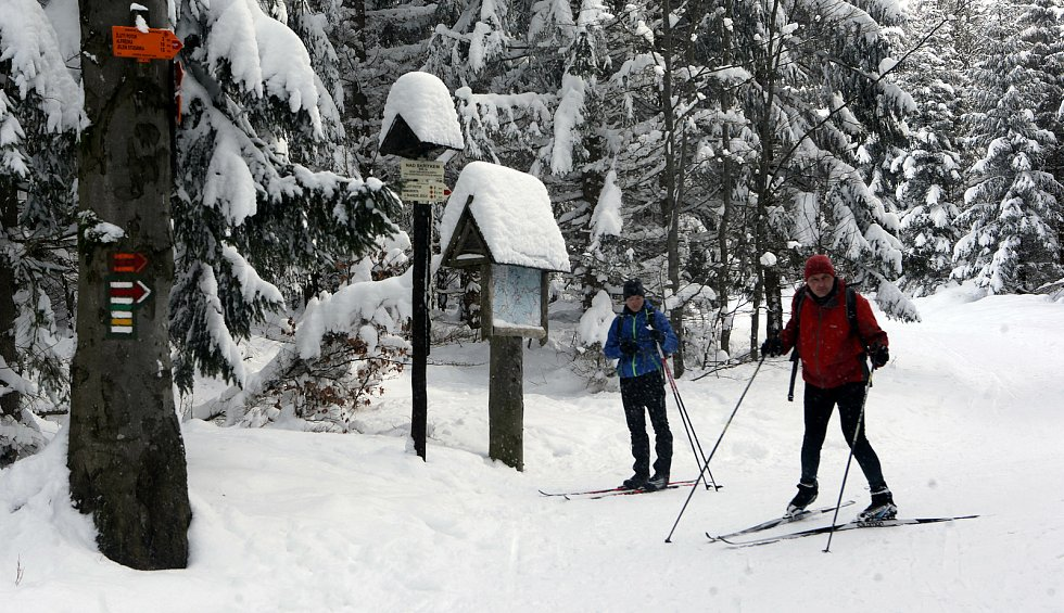 Chata Skřítek v Jeseníkách je výchozí místo pro běžkování. Sobota 16. ledna 2021