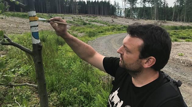 Obnova turistického značení po vichřici v okolí Dalova