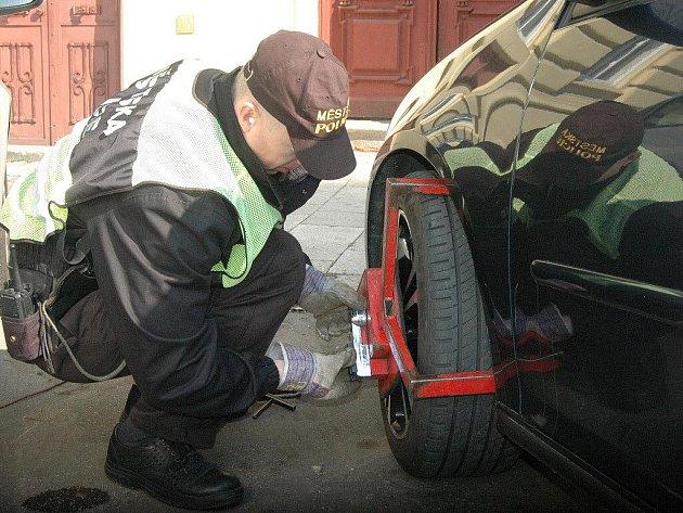 Strážníci v akci - instalace botičky