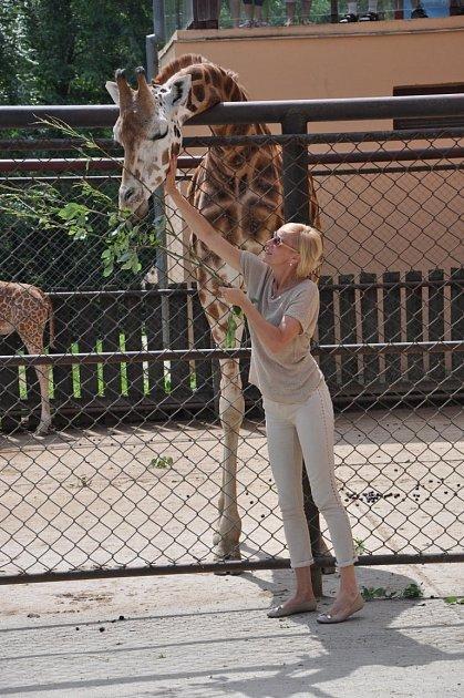 Šansoniérka Renata Drössler volomoucké zoo