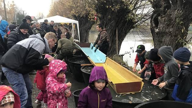 Výlov obecního rybníka v Hlušovicích přilákal zájemce o tradiční podzimní podívanou i čerstvou rybu, kterou si mohli zakoupit. Výtěžek z prodeje kaprů, amurů, štik a candátů investuje obec do omlazení obsádky.