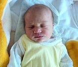 Karolína Krejčí, Praha, narozena 5. června ve Šternberku, míra 49 cm, váha 3060 g