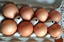 Drůbežárny v Česku chovají nejčastěji plemeno Hisex snášející hnědá vejce. O Velikonocích proto musejí prodejci dodat hospodyňkám na kraslice bílé vejce ze zahraničí. Většinou z Polska.