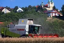 Pracovníci Agra Chválkovice sklízejí řepku na polích pod Sv. Kopečkem