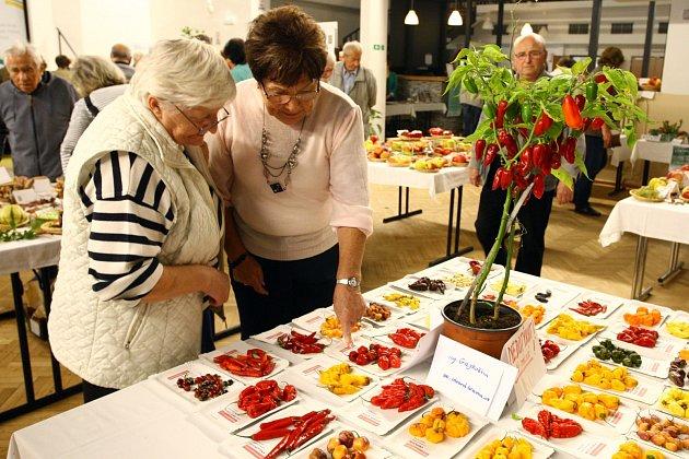výstava zeleniny a ovoce