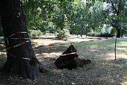 Místo ve Smetanových sadech v Olomouci, kde spadlo malé dítě do hluboké díry u pařezu nedaleko cyklostezky mezi fontánou a tržnicí