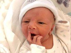 David Fryc, Olomouc narozen 17. října míra 48 cm, váha 2950 g