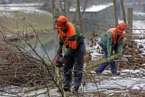 Kácení u řeky Moravy v centru Olomouce kvůli další etapě protipovodňových opatření