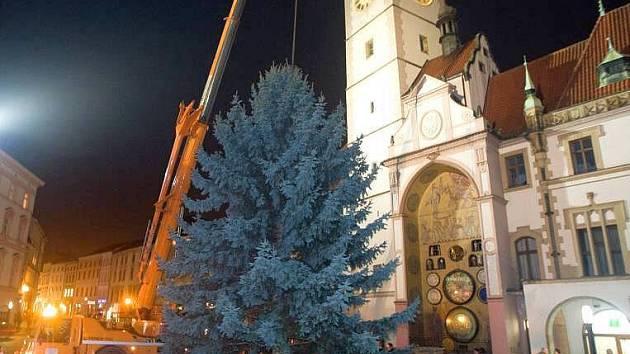 Usazení vánočního stromu na Horním náměstí. Ilustrační foto
