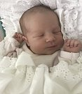Beatrice Hodová, Brno-Slatina, narozena 30. června ve Šternberku, míra 50 cm, váha 3060 g