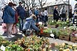 První Zahradnické trhy roku 2021 na výstavišti Flora Olomouc. Sobota 24. dubna 2021