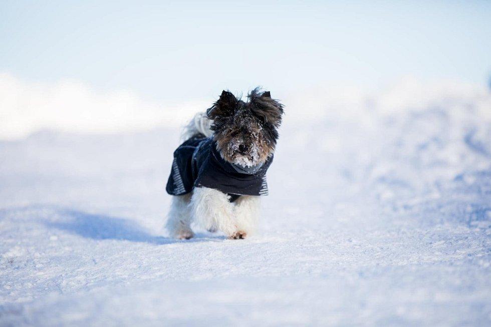 Na zimu jsme připraveni