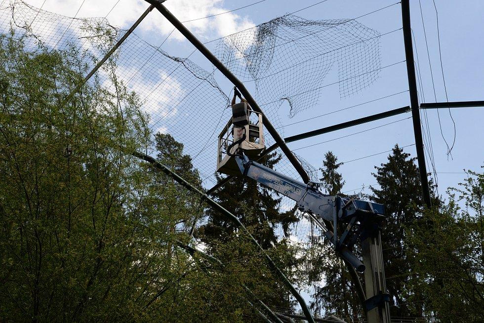 Olomoucká zoo dokončuje atraktivní novinku - průchozí ptačí voliéru. Ta prošla rekonstrukcí a nyní se ještě čeká na výstavbu zimoviště a cesty pro návštěvníky.