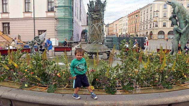 Květinová výzdoba Arionovy kašny při příležitosti barokních slavností.
