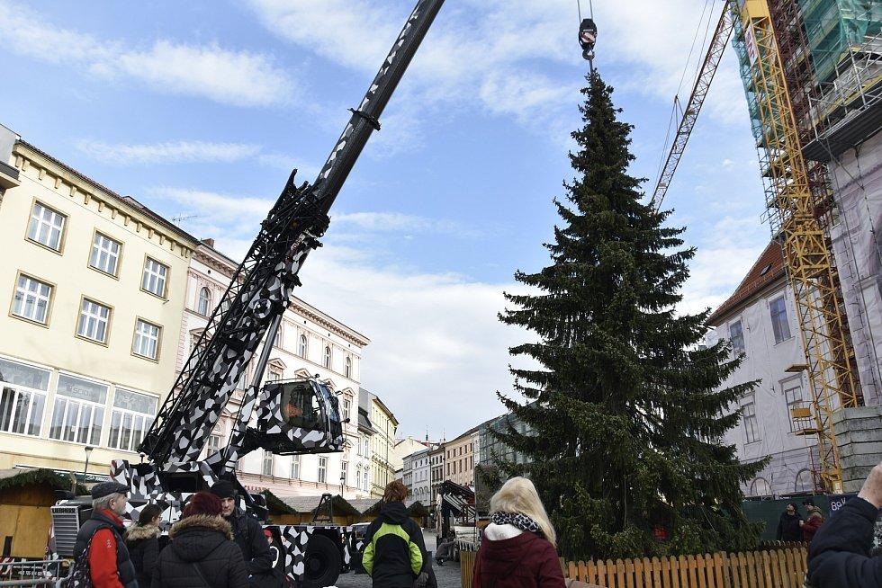Instalace vánočního smrku na Horním náměstí v Olomouci, 16. 11. 2019