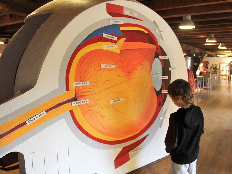 Dny mozku v Pevnosti poznání v Olomouci