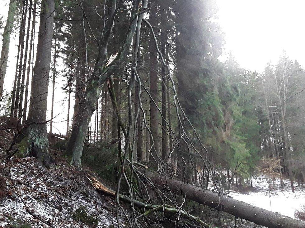 Následky silného větru v Olomouckém kraji 11. 2. 2020