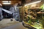 Nový africký pavilon Kalahari v olomoucké zoo.