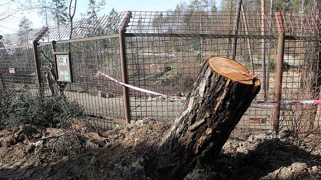 Olomoucká zoo poničená vichřicí. Konec března 2019