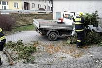 Strom spadl na dodávku ve Velkém Týnci. Následky silného větru v Olomouckém kraji, 4.2. 2020