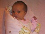 Adéla Havlíková, Lesnice, narozena 29. listopadu, míra 51 cm, váha 3830 g