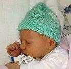Štěpán Tomek, Velký Újezd, narozen 3. listopadu v Olomouci, váha 3020 g