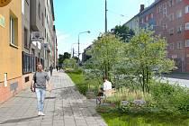Olomoucká Masarykova třída bude zelenější