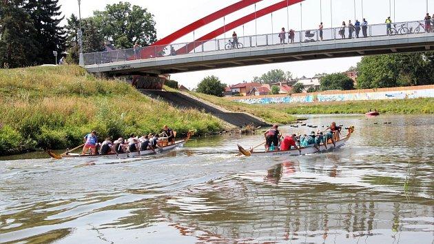 Dračí lodě brázdí řeku Moravu v Olomouci