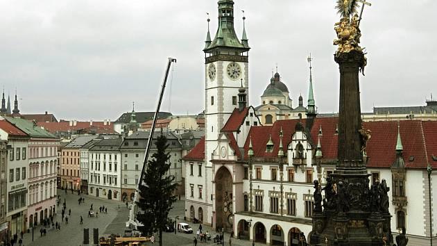 Olomouc už má vánoční strom.