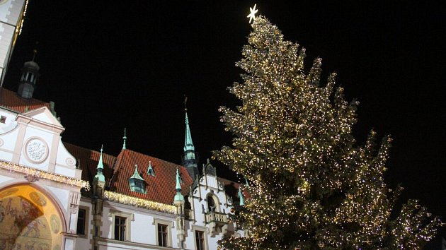 Vánoční strom v Olomouci. Ilustrační foto