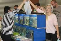 Aquatera na olomouckém výstavišti
