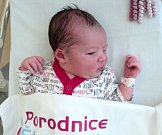 Viktorie Večeřová, Uničov, narozena 11. června, míra 51 cm, váha 3370 g