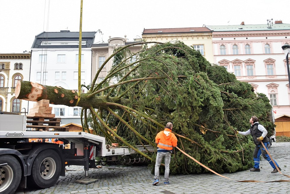 18.11.2018. Vánoční strom dorazil na Horní náměstí v Olomouci