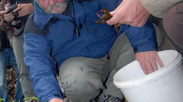 Zoolog Miloš Holzer vysazuje raky.