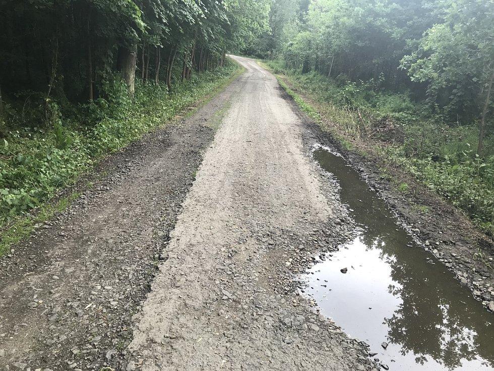 Lesní cestu k Lovecké chatě u Horky nad Moravou zavře oprava. Na snímku úsek od mostu k hájence.