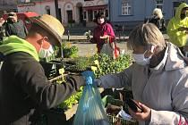 Tržnice v Olomouci opět žije. S rozestupy a rouškami