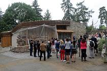Hrabáč kapský, surikaty, veverka kapská jsou obyvateli nového pavilonu Kalahari v ZOO Olomouc na Svatém Kopečku.